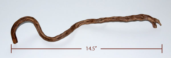 The twig that inspired The Hummer, includes measurement.