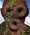 Ant Hill Man